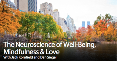 The Neuroscience of Well-Being, Mindfulness & Love [1 of 2]